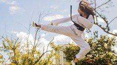 Martial Arts Niche